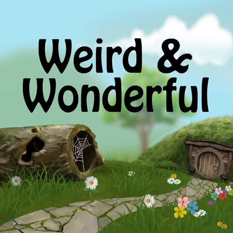 Music Audio Stories - Weird & Wonderful audiobook cover image